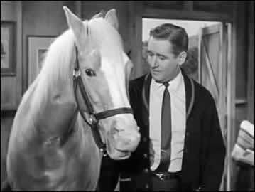 Bamboo Harvestor and Alan Young